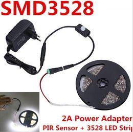 Smart Led Strips PIR Sensor Switch SMD 3528 5M 300 Leds Cool White Warm Red Blue + 12V 2A Power Supply Smart Home LED Light 2015 New Arrival