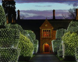 Wholesale LED M M LEDs Web Net Fairy Christmas Light curtain Net lights home garden decoration Power plug110 V