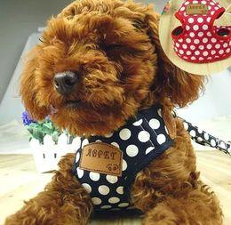 Wholesale Nylon Red Black Dots Dog Cat Pet Harness Good Qualty Dog Lead Rope Training Leash Pet Supplier Mix Color S M L Size