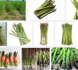 Wholesale Promotion Sale Mary Washington Asparagus Seeds the healthiest vegetable seeds delicious nutritious perennia