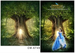 5*6.5FT Cinderella Backgrounds Photography Backdrops Magic Forest Fotografia Thin Cloth Vinyl Backdrops For Photography Hot