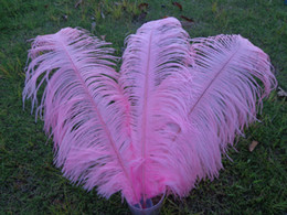Wholesale_100 pcs a lot 6-24inch pink Ostrich Feather Plume for Wedding Centerpieces table decoration