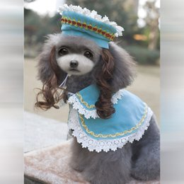 Wholesale Princess pet dog clothes princess cloak suits Princess Ann suits with hat and wigs and cloak