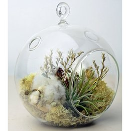 Wholesale Glass Hanging mm Round Ball Air Plant Terrarium Hanging Votive Candle Holder Flat Round Base and Loop Ring Hook Pack
