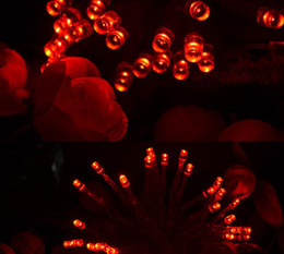 Compra Online Luces de hadas blancas con pilas-DHL 40 LED String Mni farolillos 3XAA batería Power Operated blanco/caliente blanco/azul/amarillo/verde/púrpura Navidad luces de Navidad decoración