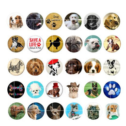 Wholesale newest DOG snap button jewelry charm popper for bracelet GL047 noosa jewelry making supplier