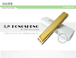 Wholesale hole harmonica send polyphonic tune beginner book entry C