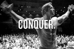 Wholesale CONQUER ARNOLD SCHWARZENEGGER Bodybuilding Fitness Motivational Poster x36 quot