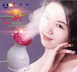 Wholesale New Hot Selling Lady s Gift Nano Ion Ionic facial sauna herbal vaporizer vaporizer herb Skin Care Moisture Skin XR