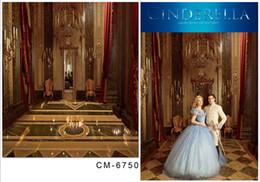 6.5*10FT (200x300CM) Cinderella Backgrounds Photography Backdrops Fotografia Indoor Thin Cloth Vinyl Backdrops For Photography cm-6750
