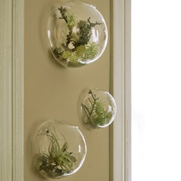 Wholesale 3PCS Glass Air Plants Terrarums Wall Bubble Terrarium fighting fish tank for home decoration wall decor