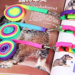 Wholesale Hot sale Rainbow color cat dog Leash Running Dog Pet Products Hauling Cable Leads Collars Traction Belt Pet Dog Traction Rope