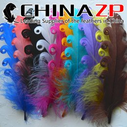 Wholesale Leading Supplier CHINAZP Crafts Factory cm inch Length Selected Prime Quality Multicolor Curled Goose Satinettes Feathers