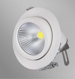 Free shipping Epistar COB light Adjustable Retail White Downlight 15W 25W 45W COB Down light Spotlight with adjustment angle in 2 directions