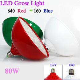Promotion led grow bleu ampoule Nouvelle Éclairage Hydroponique AC85-265V 80W E27 Rouge / Bleu SMD3528 800 Leds Hydroponique LED Plant Grow Lights Ampoule LED Lampe de croissance LED