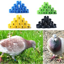 Wholesale 4 Colors For Choose mm Numbered Poultry Leg Bands Bird Foot Ring Pigeon Pet Product