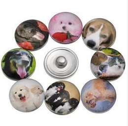 wholesale 60pcs lot Mix styles New Lovely Dog Animal 18mm Snap Button Glass Ginger Snap Button Charm Jewelry