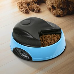 Wholesale Auto pet feeder pet food bowl timer Dog Cat Feeder With LCD display