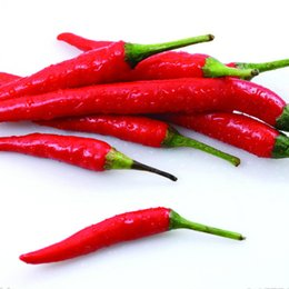 500 Red chili pepper seeds, DIY Home Potted balcony vegetable seeds,very hotFree Shipping SS084