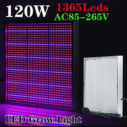 Wholesale Newest W Red Blue High Power LED Grow Light for Flowering Plant and Hydroponics System led grow panel AC85 V
