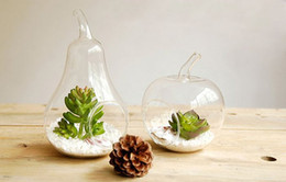 2pcs set Apple and Pear Shape Glass Desktop Vase,Holiday Decor & Gifts,Home Decoration,Wedding Decor,Gifts For Her