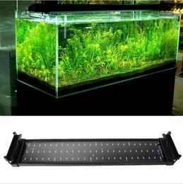 11W Aquarium LED Lights 100-240V SMD Blue And White 2 Mode Decorative Lamp For Fish Plant Lighting With EU UK US Plug epistar