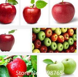 Цветковые деревья Онлайн-Поощрение 30 шт Бонсай Яблоня Деревья редких фруктов семена бонсай дерево - Америка красный вкусный семена яблонь сад для цветочный горшок