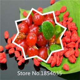 Wholesale Garden Plant Goji Berry Seeds Organic NON GMO Goji Wolfberry Berry ORGANIC FRESH SEEDS Bonsai Seed