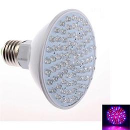 Led grow bleu ampoule en Ligne-Hydroponique éclairage 4.5W E27 LED 80 Leds rouge et bleu hydroponique croître usine de LED Light Bulb 110V 220V