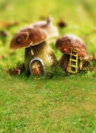 2017 bébé toiles de fond la photographie de vinyle 200cm * 150cm (6.5ft * 5ft) Nature grass coquelicot maison de champignons Photographies de bébé fond de toile toile de vinyle fond d'écran bébé toiles de fond la photographie de vinyle promotion