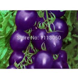 Wholesale 100pcs Tomato Seed Purple Tomato Vegetable Fruit Lycopersicon Esculentum Bonsai plants Seeds for home garden