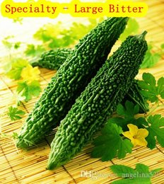 Wholesale Bitter melon bitter specialty and large vegetables melon seeds Planter Garden Supplies Alias lianggua crystal and green can lose weight