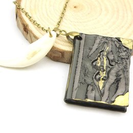 Wholesale-Freeshipping wholesale Harry potter spike diary necklace