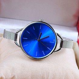 Wholesale Fashion Wristwatches High Luxury wire mesh belt Lady watches Simple creative Lady Watches women Quarz Watch Geneva