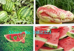 Wholesale 20 delicious Watermelon Sugar Baby Garden fruit seeds