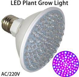 Led grow bleu ampoule à vendre-La plus récente Éclairage Hydroponique 4.5W E27 LED 80 Leds Rouge et Bleu Hydroponique LED Plant Grow Ampoule 220V Livraison gratuite