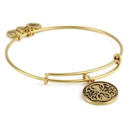 Wholesale alex ani bangles new Bar quot Chinese knot Positive energy quot Rafaelian Silver and gold Finish Expandable Bracelet charm bangles hot sale