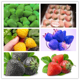 Wholesale 50 Types of Strawberry Seeds Black White Yellow Blue Giant Strawberries