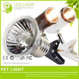 Wholesale Turtle lamp tortoise backlight heated uva uvb reptile lamp full sun burner w E27 base AC220V