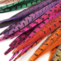 Free shipping 100pcs lot 30-35cm purple orange green black Hot Pink turquoise royal blue Yellow red Ringneck Pheasant Tail Feathers