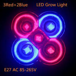 Led grow bleu ampoule en Ligne-Vente en gros-1pcs LED à spectre complet Éclairez les lumières 10W E27 Rouge ou Bleu LED Améliorez la lampe pour l'usine de fleurs Système hydroponique AC85-265V Boîte de culture