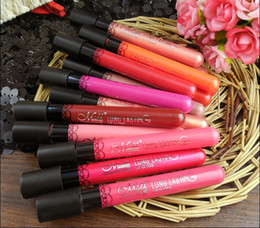 Waterproof lipstick lip gloss multicolor lipgloss velvet matte lipstick red color vitality cerise star