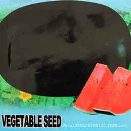 Black Beauty black PUMA big watermelon seeds yielding a single melon sugar content of up to 40 kilograms of 12 to about 20