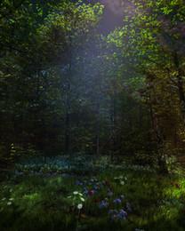 5x7ft Fairy tale theme Vinyl Custom Photography Backdrop Prop Photo Studio Backgrounds TTW-26