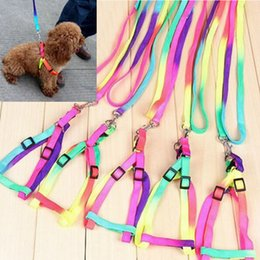 Wholesale Leash for Pet New Lovely Colorful Rainbow color cat Dog Multicolor pets collars leather accessories walking harness pet products CM