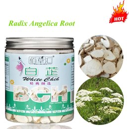 Wholesale Radix Angelica Traditional Chinese Herbal tea Dahurica Root Tea Benefit Whitening Improve Body Circulation Anti aging Angelica