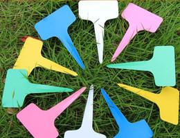 Wholesale 100PCS plastic factory T type tag markers kindergarten label CM T type flower card insert flower plant labels AE03330 order lt no track