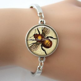 Wholesale Phrenology insect Bee Picture Charm Anatomy Jewelry Vintage Animal Design New bracelet bangle BE01
