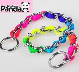 Wholesale Pet supplies Cute Rainbow necklace with iron hoop dog leash good qulity pole chain pcslot