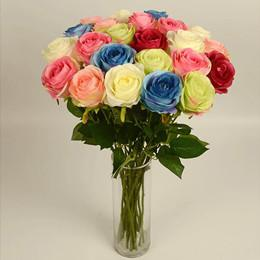 Wholesale Wedding Supplies Beautiful Garden Plants New Arrival Rose Flowers Any Color Valentine Gifts